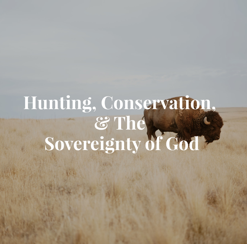 Hunting, Conservation, and the Sovereignty of God