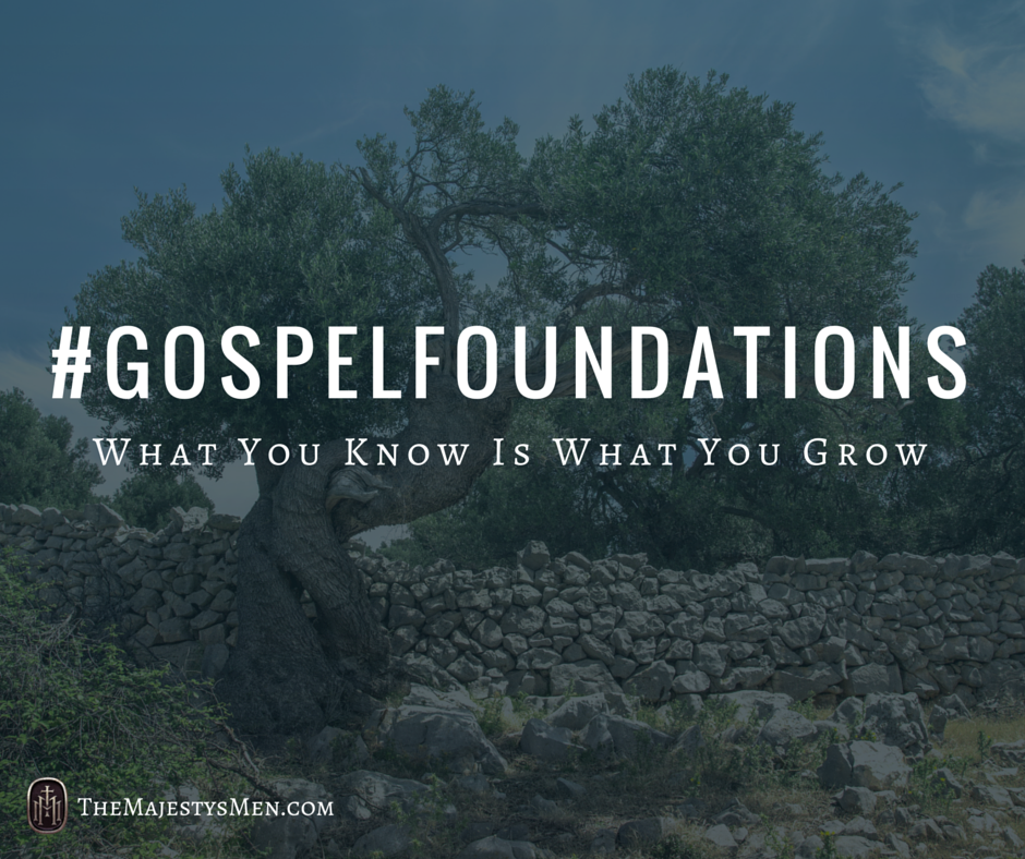 gospel foundations tree know grow
