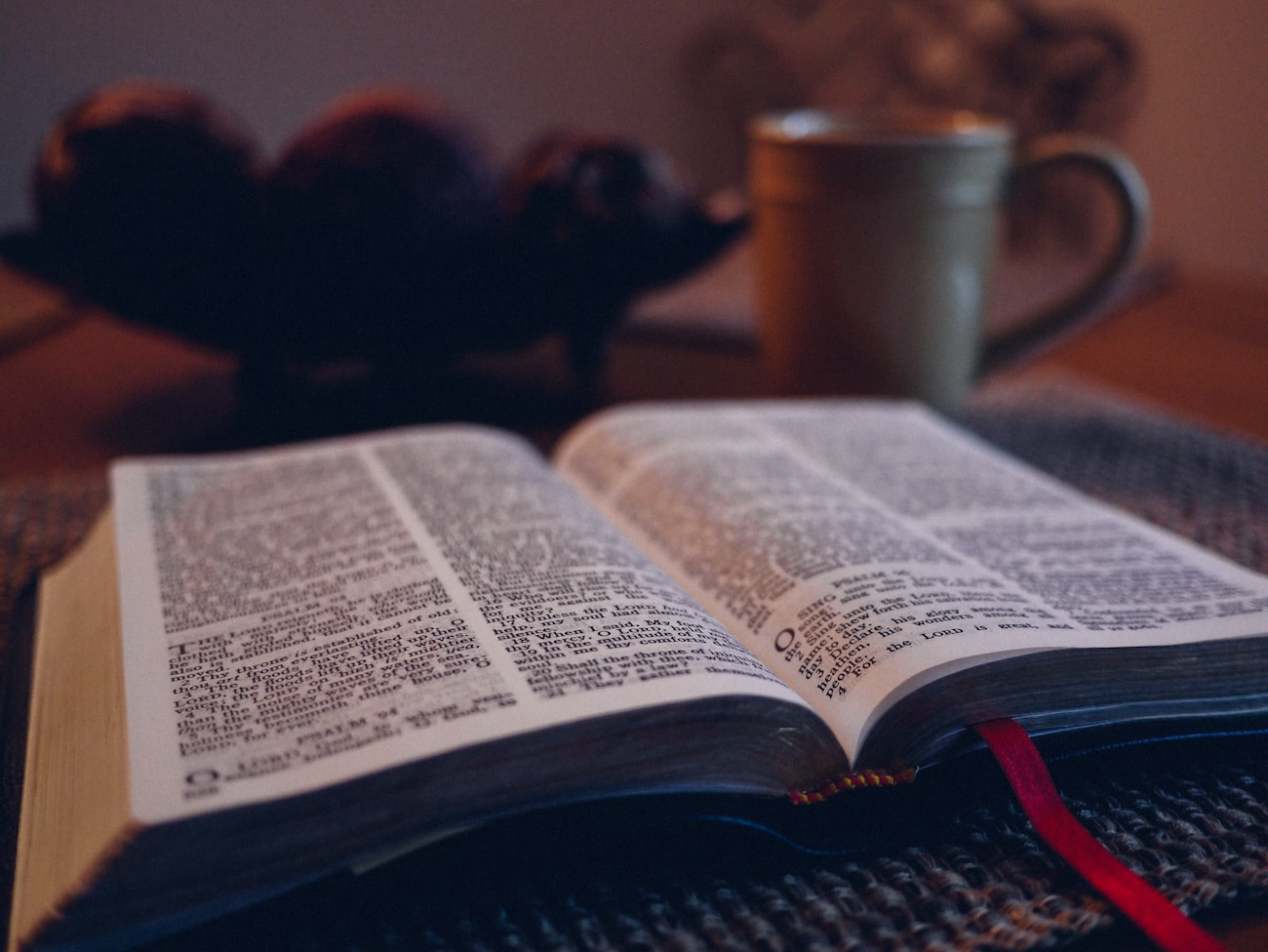 where to start bible reading image