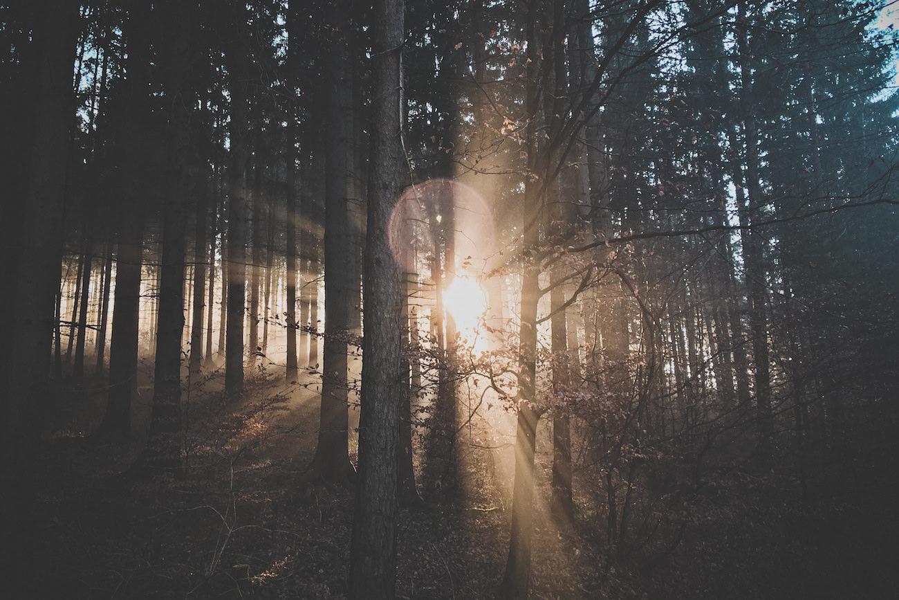 God holy spirit cynicism hope faith love